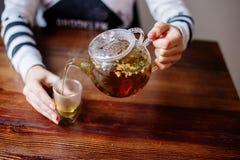 Nalewać Ziołowej herbaty fotografia stock