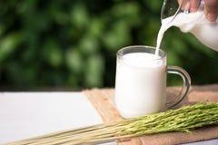 Nalewający mleku dla jeden twój miłości Fotografia Stock