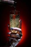 nalewający szampański szkło Obraz Stock