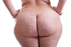 Nalgas de la muchacha con obesidad imagen de archivo libre de regalías
