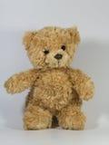 Nalle-björn Arkivbild
