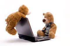 nalle för björndatorbärbar dator Arkivfoton