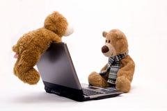 nalle för björndatorbärbar dator Arkivfoto