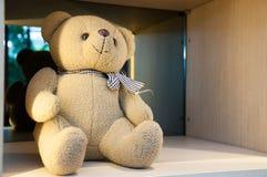 Nallebjörn fotografering för bildbyråer