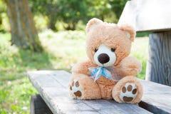Nallebjörn på bänken Royaltyfria Bilder