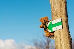 Nallebjörn på ferie fotografering för bildbyråer