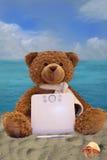 Nallebjörn som rymmer en diagramTablet royaltyfri foto