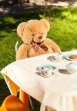 Nallebjörn som sitter bak tabellen och dricker te Arkivbild