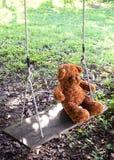 Nallebjörn som sitter på gunga över gräsmatta ensam mening Favorit D royaltyfria bilder