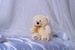 Nallebjörn som sitter på sängen arkivfoto