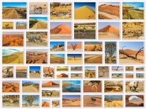Namíbia ajardina a colagem Imagem de Stock