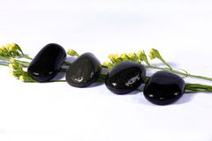 Nam bloemblaadjes en kiezelsteen toe Royalty-vrije Stock Foto