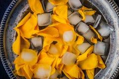 Nam bloemblaadjes met ijsblokjes in de uitstekende hoogste mening van de metaalplaat toe Royalty-vrije Stock Afbeelding