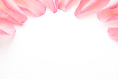 Nam bloemblaadjes toe Royalty-vrije Stock Foto