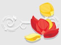 nam bloemblaadjes toe Decoratieve achtergrond voor groetkaart Stock Foto
