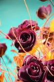 Nam bloemen toe Royalty-vrije Stock Afbeeldingen