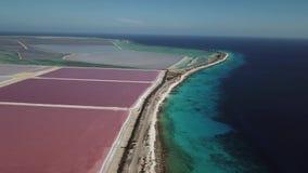 Nam Caraïbische zoute van de het eiland luchthommel van meerbonaire hoogste de menings4k UHD video toe stock footage