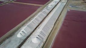 Nam Caraïbische zoute van de het eiland luchthommel van meerbonaire hoogste de menings4k UHD video toe stock video