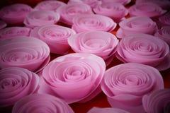 Nam document roze toe stock afbeeldingen