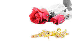 Nam en Armband toe Royalty-vrije Stock Afbeelding