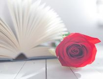 Nam en Boek Romaanse liefde toe Royalty-vrije Stock Afbeelding