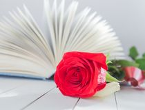 Nam en Boek Romaanse liefde toe Royalty-vrije Stock Fotografie