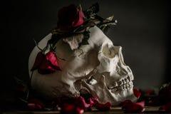 Nam en schedel toe royalty-vrije stock afbeelding