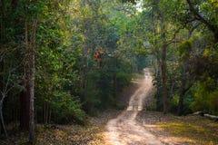 Nam Nao National Park, Phetchabun, Thailand. Stock Photography