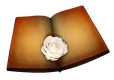 Nam op antiek boek toe Stock Afbeelding