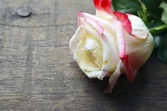 Nam op oude houten achtergrond toe voor de Dag van Valentine ` s met exemplaarruimte Valentine Rose Stock Fotografie