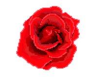 Nam pictogram toe Het art Embleem van de bloemwinkel vector illustratie