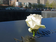 Nam in 11 September Herdenkingstoe het Nadenken Pool Stock Foto