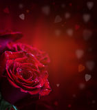 Nam toe Rode rozen Boeket van rode rozen Verscheidene rozen op Granietachtergrond Valentijnskaartendag, de achtergrond van de huw Stock Fotografie
