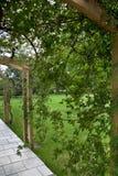 Nam tuin in een park toe royalty-vrije stock afbeelding