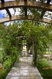 Nam tuin en pergola toe royalty-vrije stock afbeelding