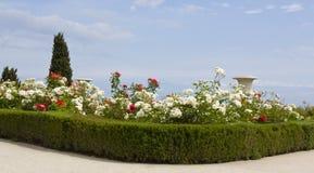 Nam tuin op overzeese kust toe stock afbeeldingen