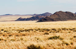 Namaqua Land in South Africa Royalty Free Stock Image