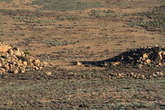 Namaqualand Południowa Afryka krajobraz Fotografia Royalty Free