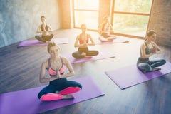 Namaste! Πέντε νέες ειρηνικές γυναίκες κάνουν το σύνθετο exerci γιόγκας στοκ φωτογραφία με δικαίωμα ελεύθερης χρήσης