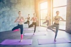 Namaste! Πέντε νέες συγκεντρωμένες γυναίκες κάνουν τη σύνθετη γιόγκα πρώην στοκ φωτογραφία με δικαίωμα ελεύθερης χρήσης