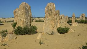 Nambung National Park, Western Australia. Pinnacles Desert, Nambung National Park, Western Australia stock video footage