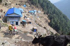 Namche Bazar, Nepal Royalty Free Stock Image
