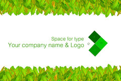 Name Card. This card for use all work, such as greeting card, name card, company card, postcard, for your contact with your are customers Royalty Free Stock Photos