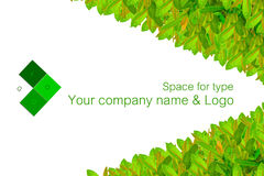 Name Card Royalty Free Stock Images
