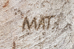 Name Mat Carved into Trunk of Moreton Bay Fig Tree Stock Photo