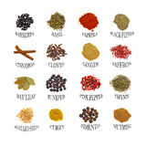 Named spices Royalty Free Stock Photography