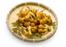 Nameko mushrooms in the bamboo basket Royalty Free Stock Photography