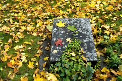 Nameless grave 01. Small old gravestone on a autumn ground. With space for copy stock photography