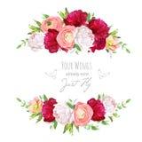 Namen de rode en witte pioenen van Bourgondië, roze ranunculus, vector des toe Stock Afbeelding