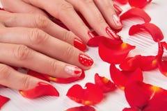 Namen de vrouwen rode spijkers en bloemblaadjes toe Royalty-vrije Stock Foto
